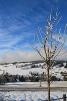 údolí v zimě