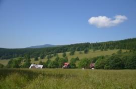 pohled na Albeřické údolí z cesty na Lysečinskou boudu