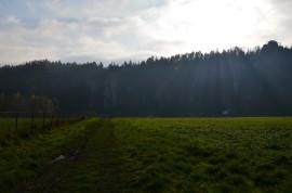 cestou k Zámku Adršpach
